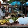 Com apoio do Governo, 3ª edição da Feira Agrária ocorre em Maceió