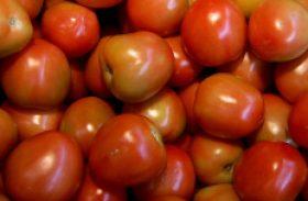 Importação de tomate do Brasil provoca polêmica na Argentina
