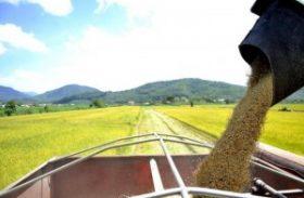 Governo autoriza Conab a vender 500 mil toneladas do estoque público de arroz
