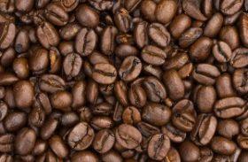 Café deve ter produção entre 46,53 a 50,15 milhões de sacas em 2014