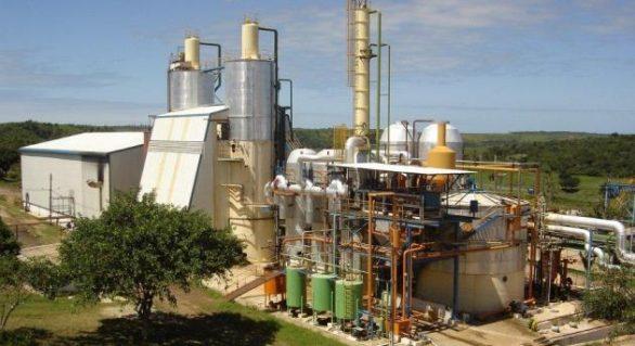 Seis usinas de cana pediram recuperação judicial em 2014
