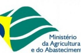 MAPA vai disponibilizar R$ 4 milhões para médio produtor