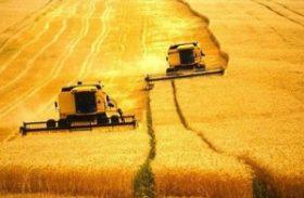 Brasil precisa de um amplo programa educação tecnológica para agropecuária