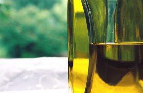 Setor do biodiesel estuda formas de diversificar fontes de matéria prima