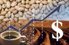 Agronegócio exporta 2,4% a mais em 12 meses e atinge US$ 99,34 bi