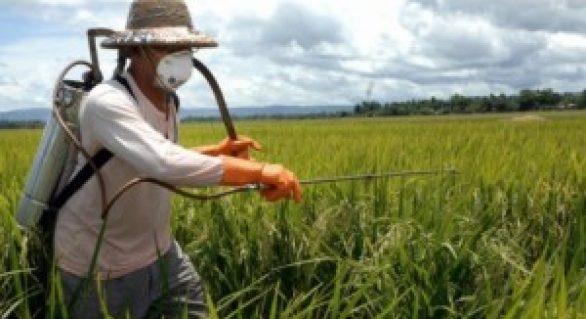 Governo prioriza uso e registro de produtos biológicos