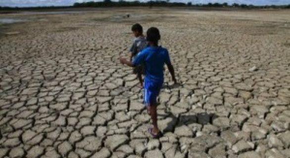 Garantia Safra 2012/2013 beneficiou cerca de 31 mil agricultores alagoanos
