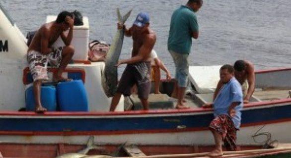 Lei Estadual da Pesca vai fortalecer aquicultura em Alagoas
