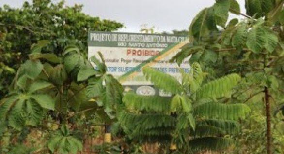 IMA e Ministério Público vistoriam áreas dentro de Usinas