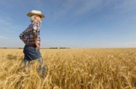 Ministério da Agricultura cria grupo para aperfeiçoar política de preços mínimos