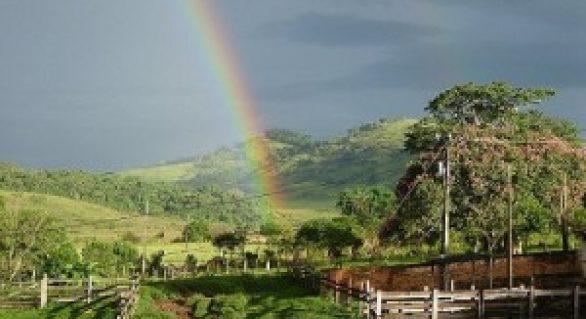 Em abril, os volumes previstos de chuva trarão condições positivas para a agropecuária