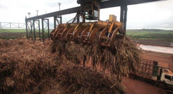 Crise reduz safra 13/14 para 21 mi de toneladas de cana
