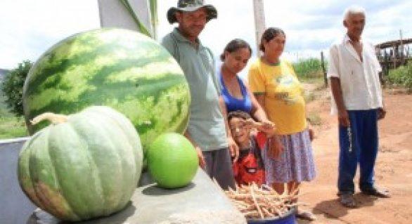 Água do Canal do Sertão traz famílias de volta para o campo