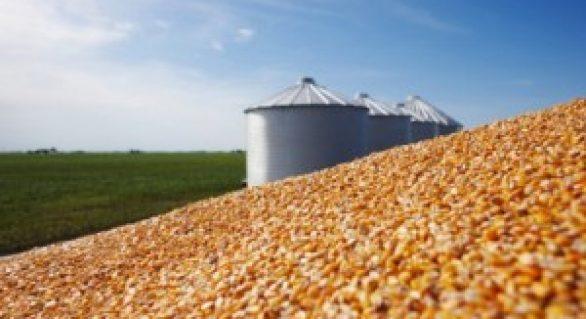 Déficit de armazenagem de grãos no país é de 40 milhões de toneladas por ano, estima Conab