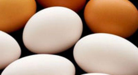 Demanda de ovos se enfraquece, mas oferta restrita sustenta cotação