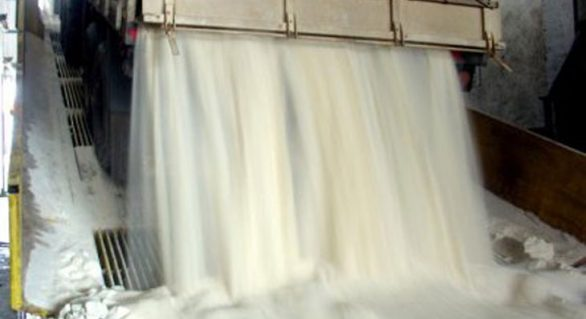 VHP alagoano produzido na safra 13/14 foi exportado para 11 países