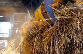 Usinas já beneficiaram 2,8 mi de toneladas de cana no ciclo 16/17