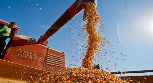Seagri realiza encontro com produtores de milho de Alagoas