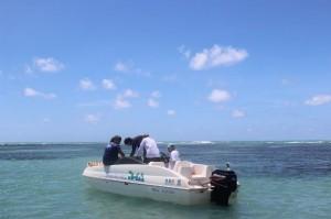 IMA deseja preservar vida marinha na região que é visitada por centenas de turistas diariamente. (Foto: Clarice Maia)