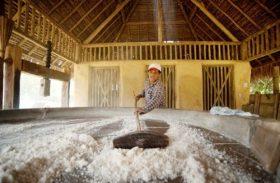 Desenvolve libera recursos para reabertura de casas de farinha