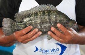 Vigilância Sanitária de Maceió fiscaliza Feira do Peixe Vivo