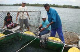 Revitalização da pesca e da aquicultura vai beneficiar mais de 40 mil pescadores