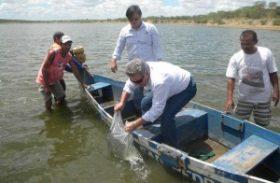 Estado garante povoamento de peixes em Jaramataia, no Sertão