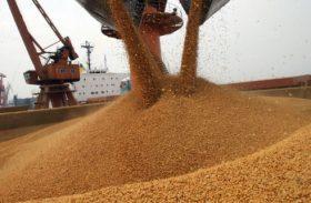 Agricultura cresce 4,7% no primeiro trimestre de 2015 e evita queda maior do Produto Interno Bruto (PIB)