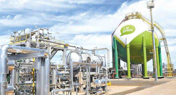 Plástico Verde da Braskem é utilizado pela Asahi Soft Drinks no Japão