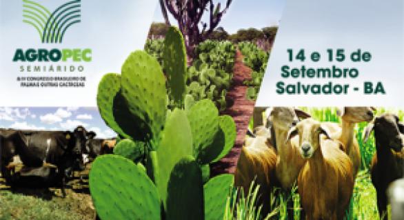 Agropecuária do Nordeste em debate no Agropec Semiárido, em Salvador