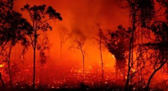 IMA passa a utilizar sistema de monitoramento de queimadas para coibí-las