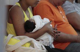 Sesau divulga nota técnica sobre as ocorrências de microcefalia em Alagoas