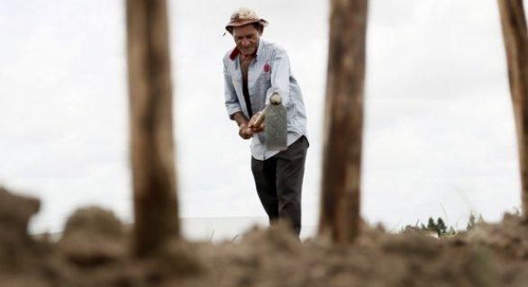 Iteral convoca agricultores para renegociar dívida com bancos