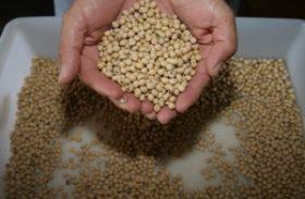 Aberto edital de distribuição de sementes para grupos de agricultura familiar