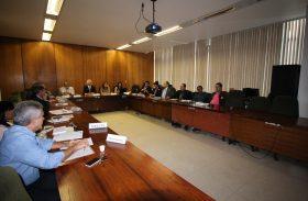 Câmara Setorial da Mandioca se reunirá no próximo dia 29