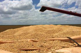 Produção brasileira de grãos deve chegar a 210,3 milhões de toneladas