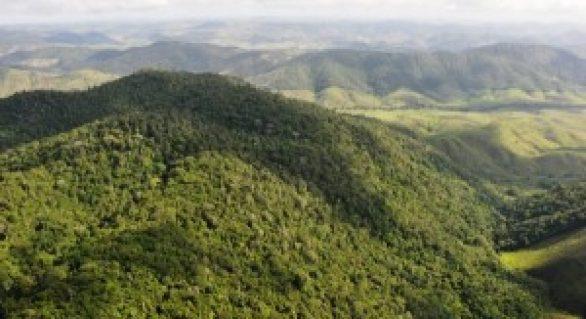 ONU alerta : degradação ambiental causa 12 milhões de mortes por ano
