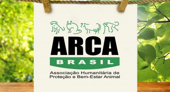 ONG colabora com os Jogos Olímpicos para a preservação da fauna nacional