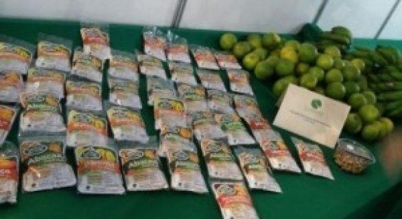 Agricultura participa da I Feira de Produtos Orgânicos em Murici