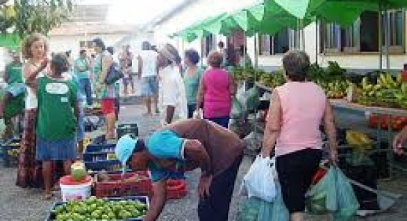 Setor terciário reivindica regulamentação das feiras itinerantes