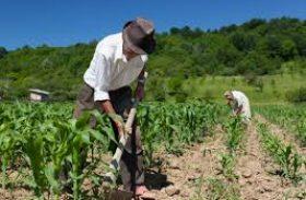 CNA defende práticas corretas para segurança do trabalhador rural