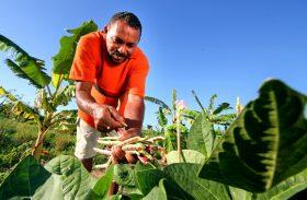 Projetos e crédito ficam mais próximos do pequeno produtor rural
