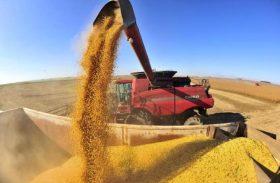 Safra brasileira deverá crescer 13,9% em 2017, diz IBGE