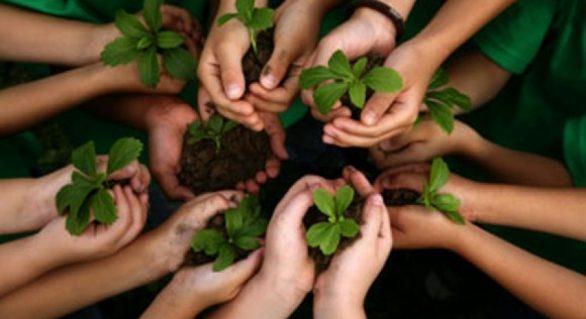 Semarh e Ministério ofertam cursos para integrantes de comissão ambiental