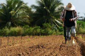 Renegociação de dívidas beneficia 34 mil produtores rurais de Alagoas