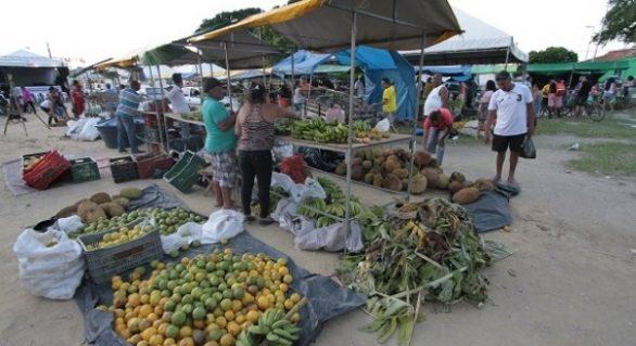 Iteral promove Feira Agrária do Crédito Fundiário em Pão de Açúcar