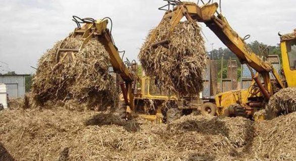 Produtores da CPLA pedem continuidade na distribuição do bagaço da cana