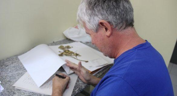 Herbário MAC recebe botânico do Estado de Minas Gerais