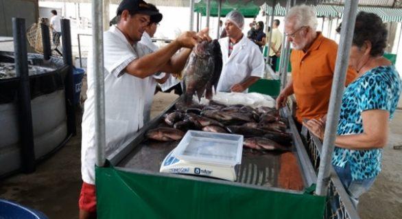 Feira do Peixe Vivo comercializa nove toneladas de pescados para a Semana Santa