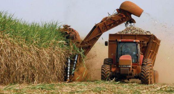 Presidente do Sindaçúcar-AL aposta na chegada das chuvas para a retomada do setor